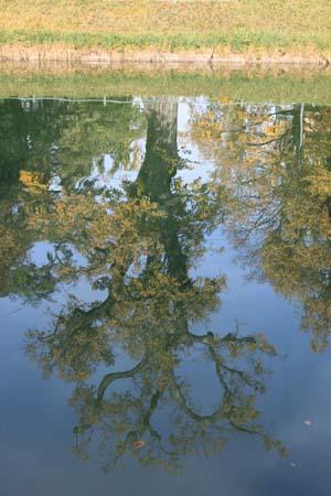 spiegelbild mensch und natur