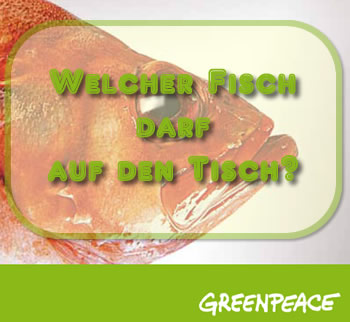 Greenpeace Ratgeber Fisch